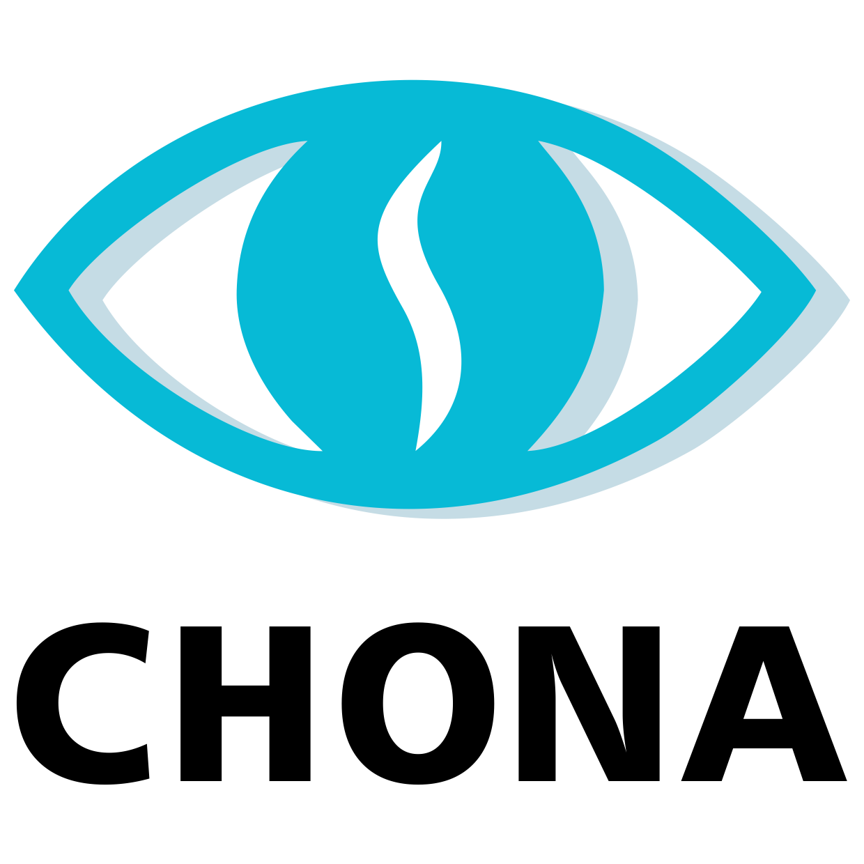 CHONA – Global leaders in Ophthalmic Surgical Instruments and